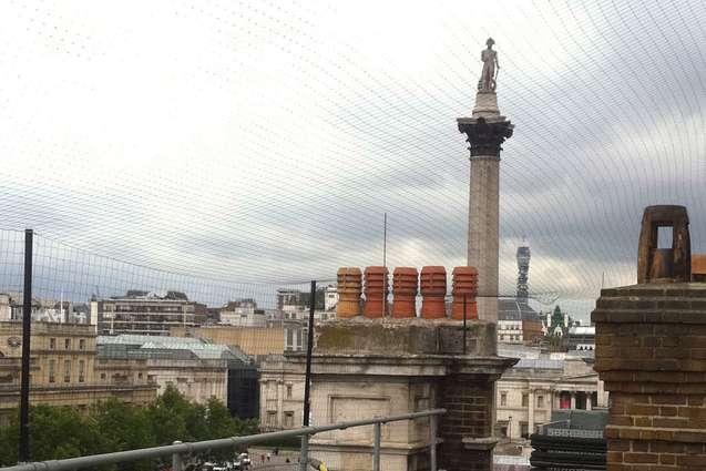 Bird netting on building in london
